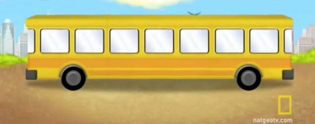 Bus Screenshot natgeotv.com