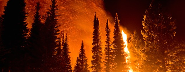 Startlingly close fire photos capture heat, danger