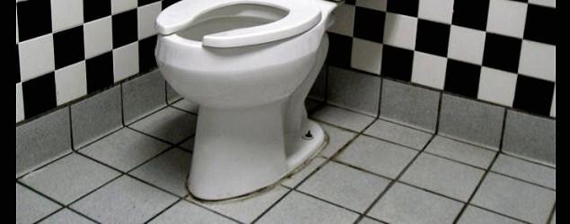 年薪75萬 全職搵廁所