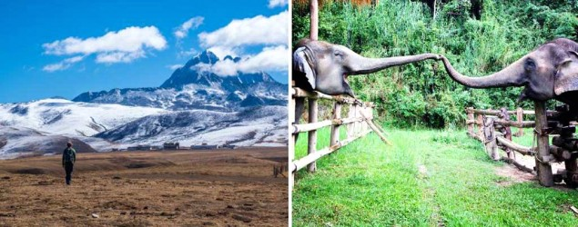 Finding a monastery in the grasslands of Tibet, left, and elephant love in Thailand. (Jarryd Salem; Lanee Lee)