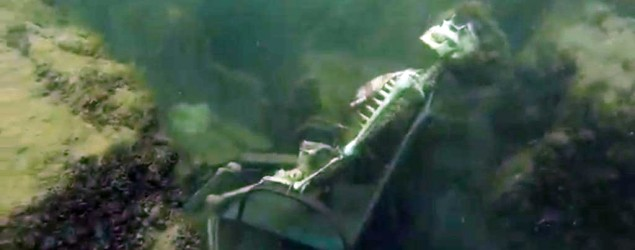 "Snorkeler spots ""skeletons'"" in Colorado River, rushes to alert police. (AP)"