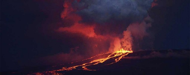 Volcano with world's only pink iguanas erupts