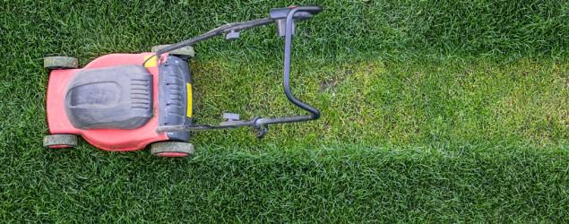 Lawnmower (ThinkStock)