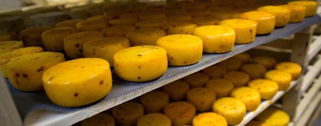 Cheese in storage at John Kopiski's farm in Russia. Farmers like Kopiski backed the Kremlin ban on Western food. (AP)