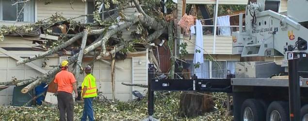 Falling tree splits Washington home in half