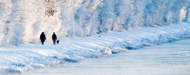 Winter Bild: dpa