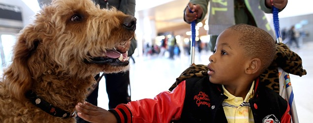 Adorable way to relieve holiday airport stress