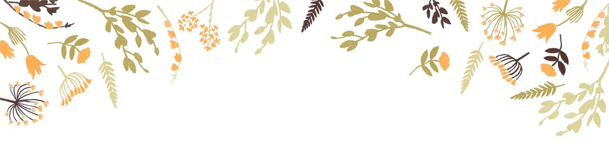 Willowmarsh