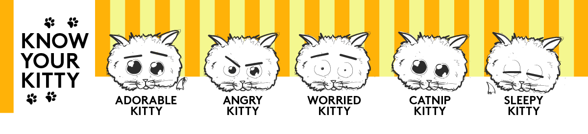 Know Your Kitty