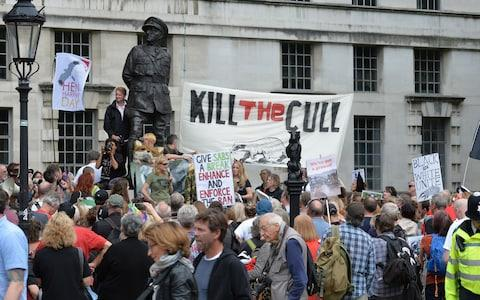 Expansion of the culling programme has been opposed by animal rights organisations - Credit: John Stillwell/PA