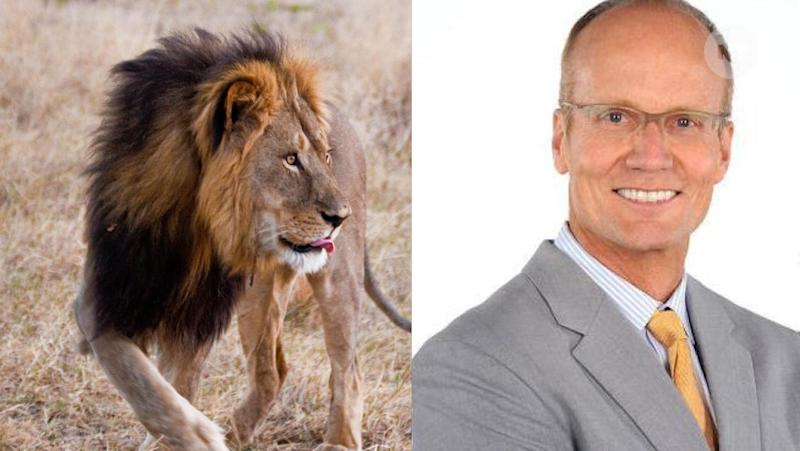 Walter James Palmer, a dentist, paid $55,000 to travel to Africa and kill Cecil the lion.