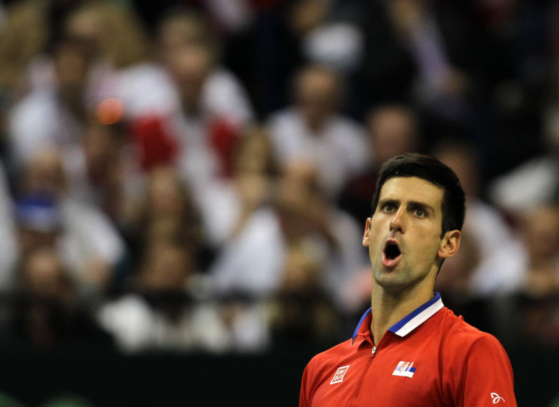 Novak Djokovic of Serbia reacts after losing a point against Czech Republic's Radek Stepanek during their Davis Cup finals tennis singles match in Belgrade, Serbia, Friday, Nov. 15, 2013.(AP Photo/Darko Vojinovic)