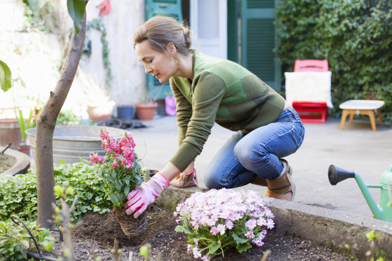 When Should You Start Planting Your Garden?