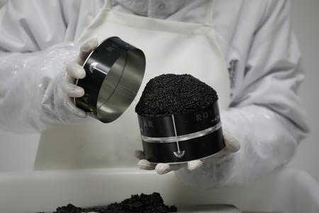 An employee closes a can of Rova caviar on the processing line at the Acipenser fish farm in Ambatolaona
