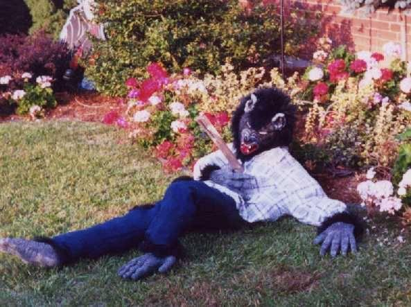 """<p>It's okay to be inspired by other people's displays, but you want your Halloween decorations to be your own. """"Copying is the sincerest form of flattery,"""" says Stross, """"but you also want to make sure it's your own and that it fits to your yard."""" <i>(Photo: Bud Stross)</i></p>"""