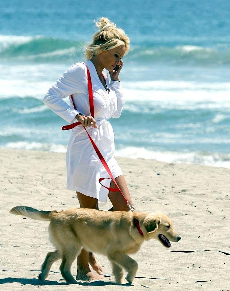 "During a Malibu photo shoot, Pamela Anderson takes a break and walks along the beach with her Golden Retriever. <a href=""http://www.x17online.com"" target=""new"">X17 Online</a> - April 26, 2007"