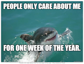 """<div class=""""caption-credit""""> Photo by: QuickMeme.com</div><b>People Only Care</b> <br> Maybe he would be a happier mammal if people showed a little more love."""