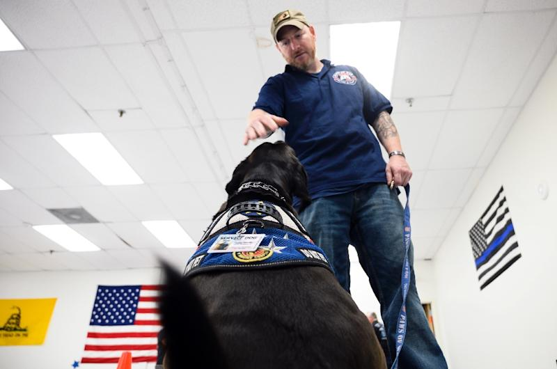 Veteran Harry Stolberg says his dog Rocky helps him wake up from the nightmares that have come after his service overseas in the Marine Corps (AFP Photo/Johannes EISELE)