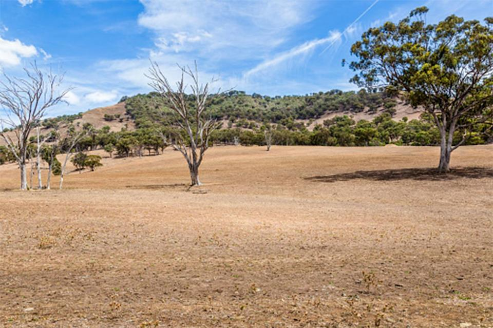 Land affected by drought in the Upper Hunter Valley, NSW, Australia