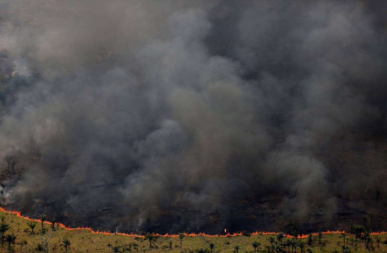 """Burning forest is seen during """"Operation Green Wave"""" conducted by agents of the Brazilian Institute for the Environment and Renewable Natural Resources, or Ibama, to combat illegal logging in Apui, in the southern region of the state of Amazonas, Brazil, August 4, 2017. REUTERS/Bruno Kelly         SEARCH """"DEFORESTATION"""" FOR THIS STORY. SEARCH """"WIDER IMAGE"""" FOR ALL STORIES.    TPX IMAGES OF THE DAY"""