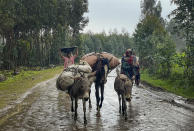 """Villagers leave their homes in the rain, carrying their belongings on donkeys, near the village of Chenna Teklehaymanot, in the Amhara region of northern Ethiopia Thursday, Sept. 9, 2021. At the scene of one of the deadliest battles of Ethiopia's 10-month Tigray conflict, witness accounts reflected the blurring line between combatant and civilian after the federal government urged all capable citizens to stop Tigray forces """"once and for all."""" (AP Photo)"""