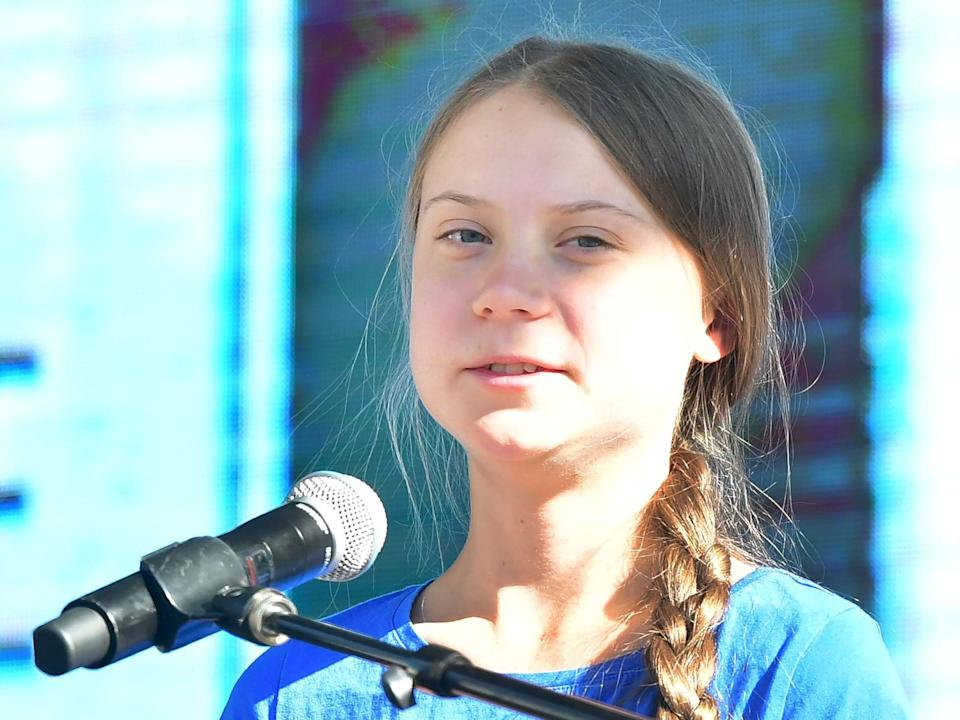 Teenage activist Greta Thunberg addresses the crowd while attending a climate action rally in Los Angeles, California, on 1 November 2019: AFP/Getty