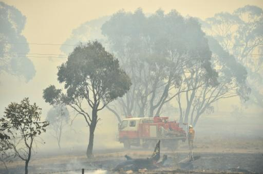 "Beleaguered volunteer firefighters who have fought the blazes day-in-day-out say they are ""over the moon"" at the rain"