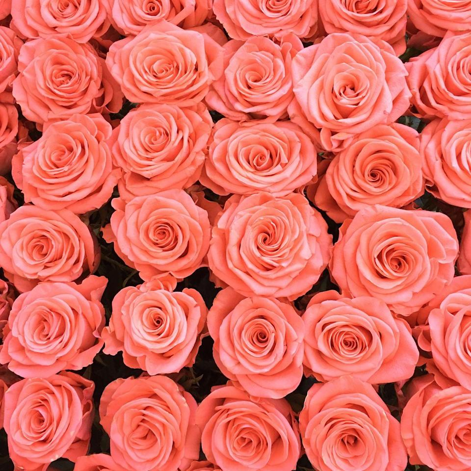 """<p>Even lighter and brighter in color than its close relative salmon, this sunny shade of <a href=""""https://www.flowerson15th.com/blog/2013/2/14/meaning-of-color-of-roses.html"""" rel=""""nofollow noopener"""" target=""""_blank"""" data-ylk=""""slk:coral represents desire"""" class=""""link rapid-noclick-resp"""">coral represents desire</a>. These roses are perfect for the new person in your life that you're excited to get to know better.</p><p><a class=""""link rapid-noclick-resp"""" href=""""https://www.amazon.com/Lings-moment-Centerpieces-Arrangements-Decorations/dp/B07H7B9PFY?tag=syn-yahoo-20&ascsubtag=%5Bartid%7C10055.g.1352%5Bsrc%7Cyahoo-us"""" rel=""""nofollow noopener"""" target=""""_blank"""" data-ylk=""""slk:SHOP CORAL ROSES"""">SHOP CORAL ROSES</a></p>"""