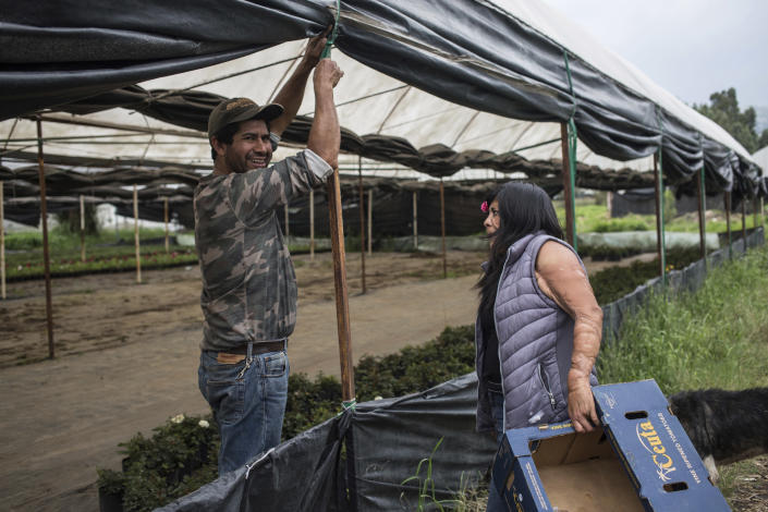 Elisa Xolalpa, who survived an acid attack when tied to a post by her ex-partner 20 years ago when she was 18, talks with fellow plant grower Celestino Ovaldo Salvador on the way to her greenhouse where she grows plants to sell at a market in Mexico City, Saturday, June 12, 2021. Survivors of acid attacks like Xolalpa are banding together and raising their voices in Mexico despite the country's sky-high violence _ especially toward women and staggering levels of impunity. (AP Photo/Ginnette Riquelme)