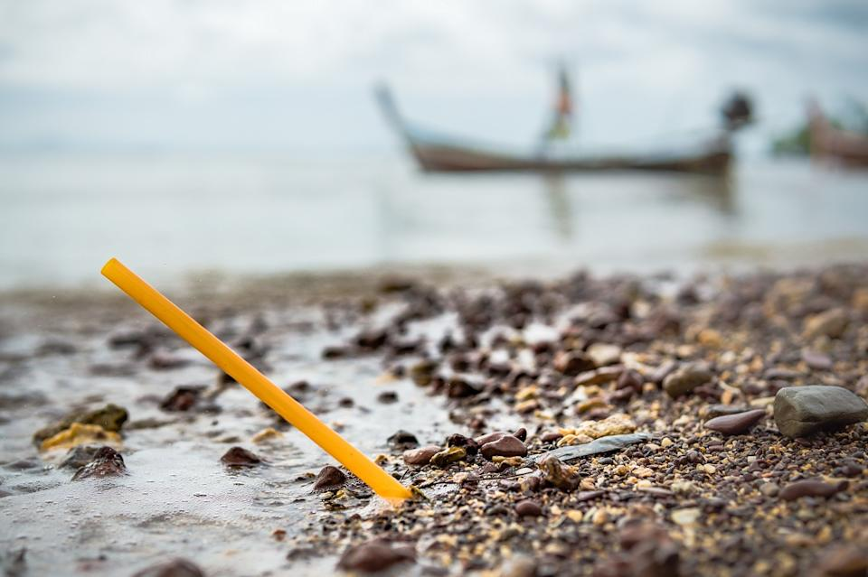Plastic straws have done enough damage to our water bodies