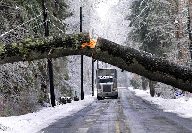 A tractor-trailer waits for a tree to be removed from Pa. 233 South in Fayetteville, Pa., Wednesday, Feb. 5, 2014. Another winter storm brought ice an snow to the region. Many trees and wires fell victim to the storm. (AP Photo/Pyublic Opinion, Markell DeLoatch)