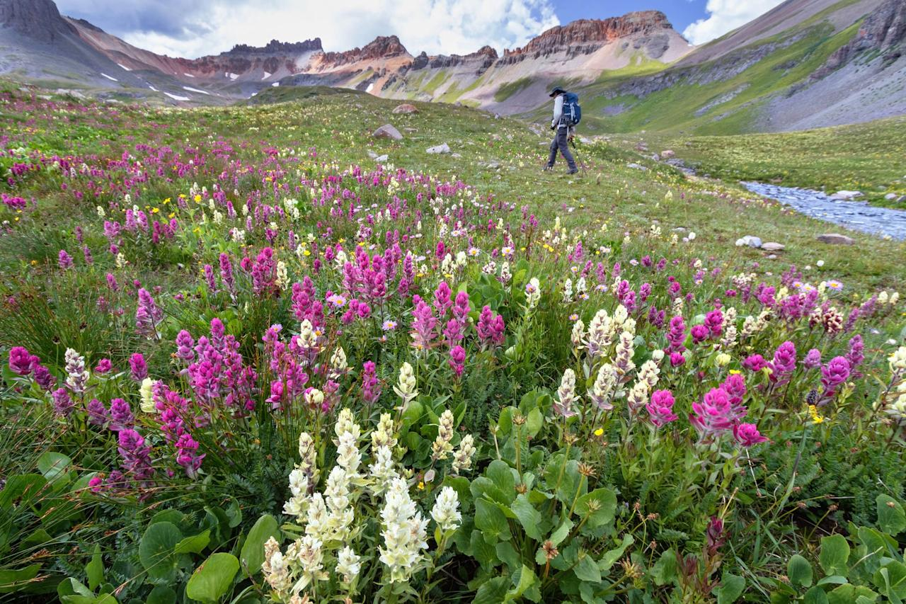 <p>If you're searching for the best vernal views, look no further. These are the most mind-blowing places in every state to take in the early sights and sounds of spring. See you later, winter!</p>