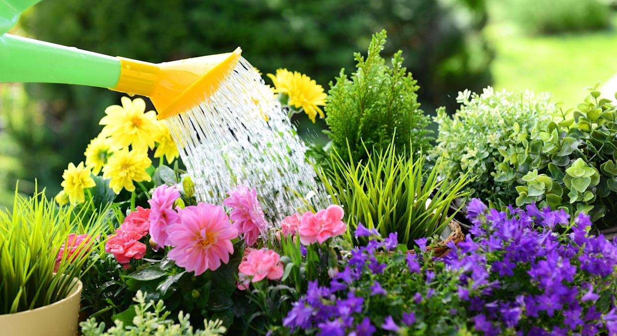 Neighbours have been fighting about who owns a flower bed using handwritten notes pinned to a post [Image: Getty]