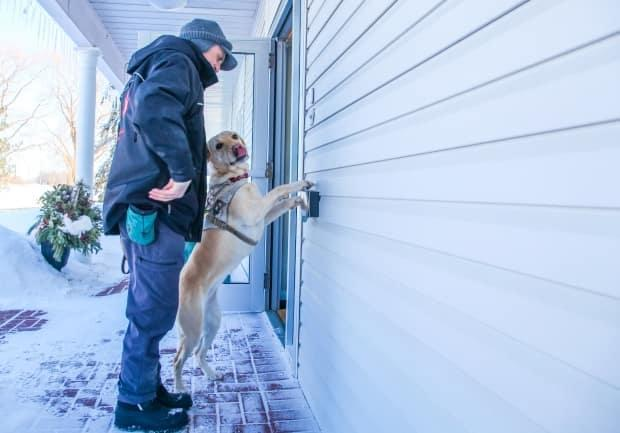 Ian Hadlum and Fawn practice pushing the door-opener button at a building on the grounds of Canadian Guide Dogs for the Blind. (Stu Mills/CBC - image credit)