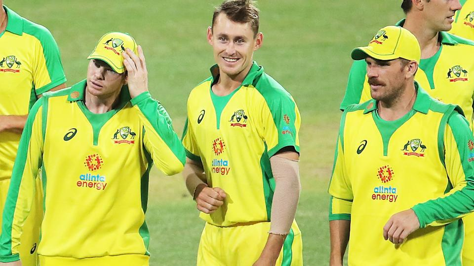 Australian players, pictured here celebrating victory after the second ODI against India.
