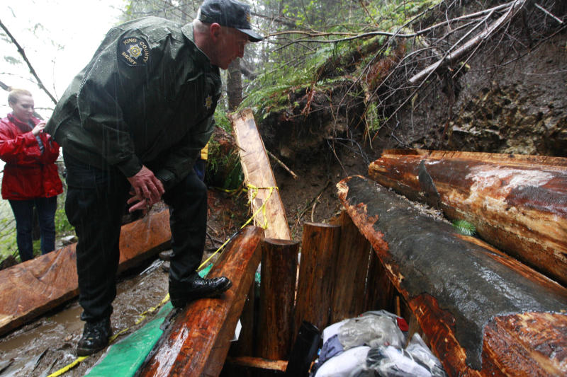 King County Sheriff's Sgt. Jesse Anderson peers into a multi-level bunker dug into the side of a remote ridge where murder suspect Peter Keller died days earlier, Monday, April 30, 2012, near North Bend, Wash. Keller spent eight years carving his hole in the side of the mountain, camouflaging the rugged underground bunker with ferns and sticks and stocking it with a generator and ammunition boxes sealed in Ziploc bags. Suspected in the deaths of his wife, daughter and pets last weekend, he headed there prepared for the long haul with high-powered rifles, scope and body armor. Police pumped in tear gas, called for him over bullhorns, and, after 22 hours, set off explosives along the top of the bunker Saturday. He was found dead of a self-inflicted gun shot. (AP Photo/Elaine Thompson)
