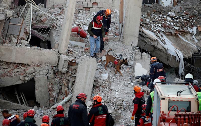 Rescue workers search the site of a collapsed building in Elazig following the January 24 earthquake - REUTERS