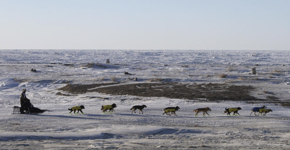 FILE - In this March 16, 2016, file photo, Mats Pettersson, of Sweden, mushes along the frozen Bering Sea coast outside Nome, Alaska. He finished in 27th position in the Iditarod Trail Sled Dog Race. Technology is used to track Alaska's Iditarod Trail Sled Dog Race far from the competitors tackling the off-the-grid route. Their progress is monitored from several hotel rooms in Anchorage whose 24/7 occupants are the Iditarod's electronic eyes and ears. (AP Photo/Mark Thiessen, File)