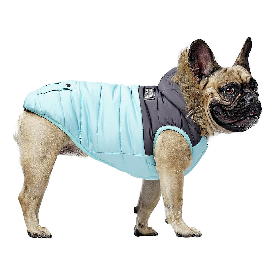 North Fetch Colourblock Teal Puffer Jacket for Dogs available at PetSmart.