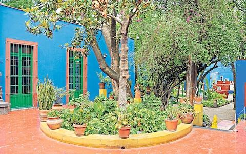 The flowers at Frida Kahlo's garden in Mexico City gives off a scent that is like that of passion fruit - Credit: Alamy