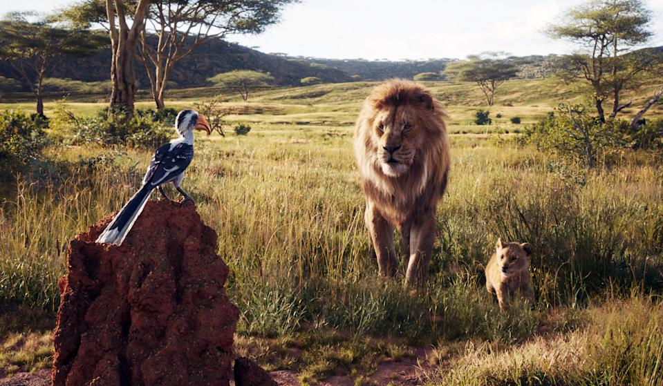 Zazu (John Oliver) gives Mufasa (James Earl Jones) and Simba (JD McCrary) the morning report in 'The Lion King' (Photo: Walt Disney Studios Motion Pictures / courtesy Everett Collection)