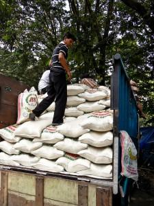 Sacks of rice loaded onto a truck