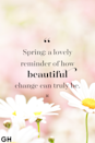<p>Spring: a lovely reminder of how beautiful change can truly be.</p>