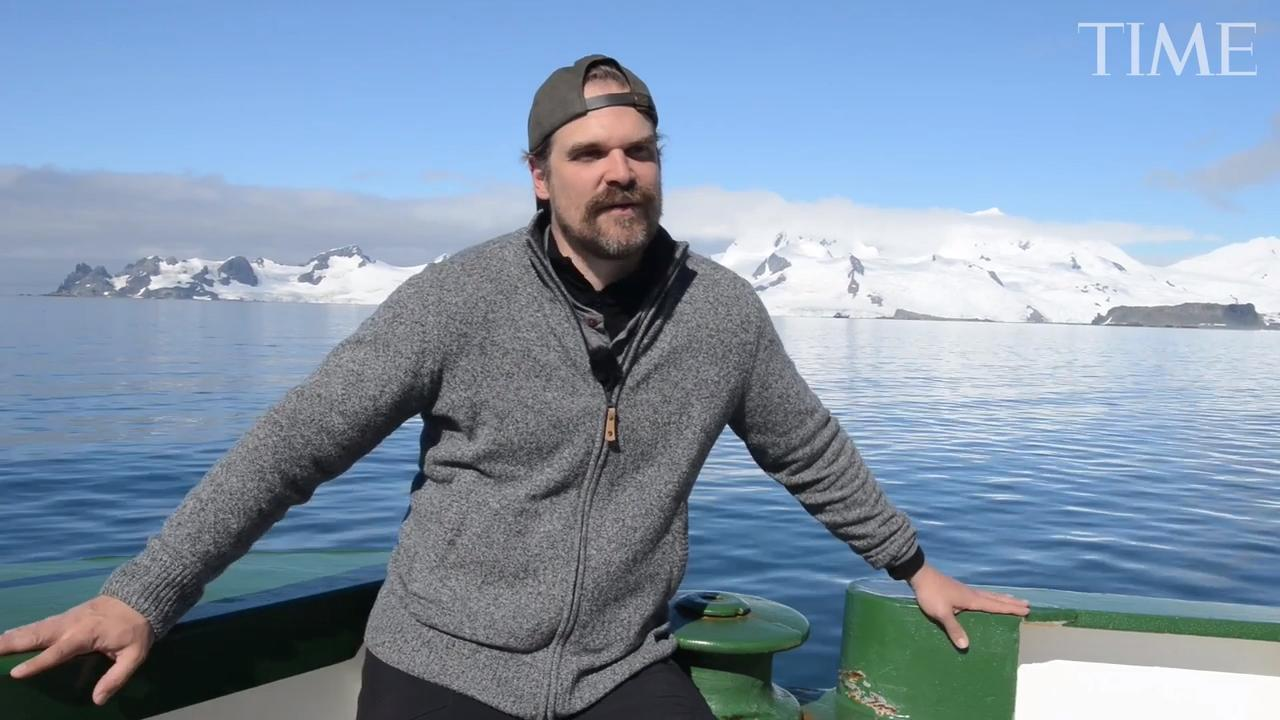 Harbour's Stranger Things fame has helped him fulfill his dream of dancing with penguins in Antarctica.