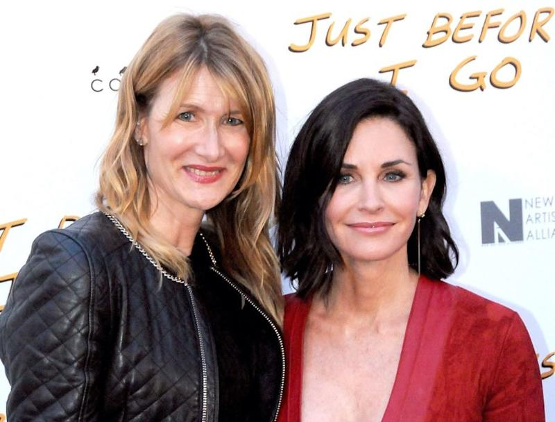 Courteney Cox and Laura Dern celebrated their 14th Christmas Eve together, and we want to be there for the 15th