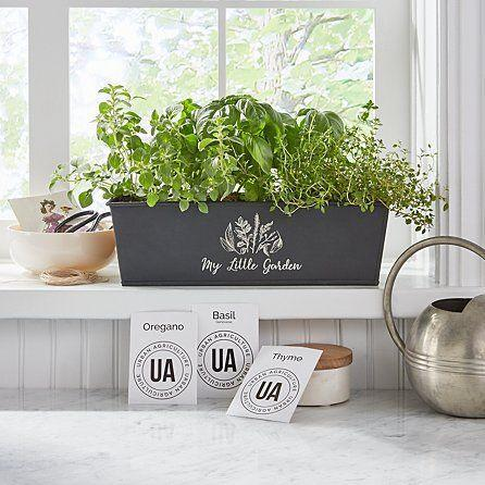 "<p>gifts.com</p><p><strong>$47.99</strong></p><p><a href=""https://www.gifts.com/product/indoor-herb-growing-kit-30261001"" rel=""nofollow noopener"" target=""_blank"" data-ylk=""slk:Shop Now"" class=""link rapid-noclick-resp"">Shop Now</a></p><p>Let their green thumb grow (and their cooking dishes prosper).</p>"