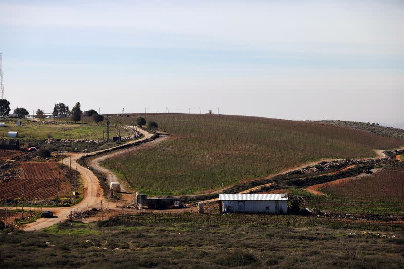A general view picture shows the vineyards of Tura Winery in Har Bracha, an Israeli settlement in the occupied-West Bank