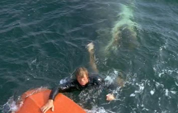 Man reaches for boat while shark bites him underwater