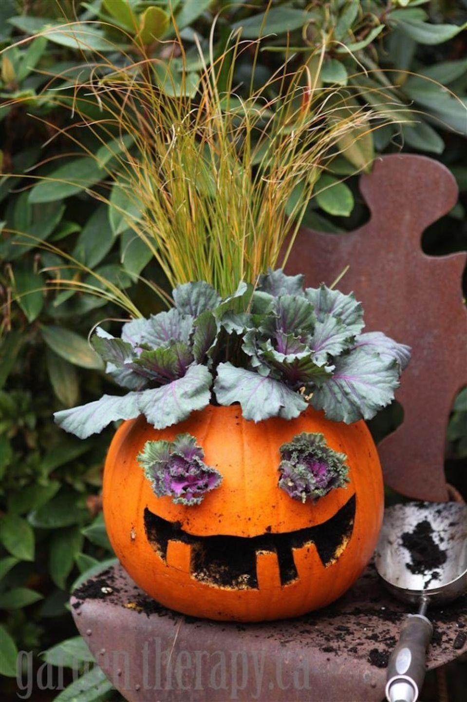 "<p>Put a smile on everyone's face with this adorably festive mini-garden! </p><p><strong>Get the tutorial at <a href=""https://gardentherapy.ca/jack-o-planterns/"" rel=""nofollow noopener"" target=""_blank"" data-ylk=""slk:Garden Therapy"" class=""link rapid-noclick-resp"">Garden Therapy</a>. </strong></p>"