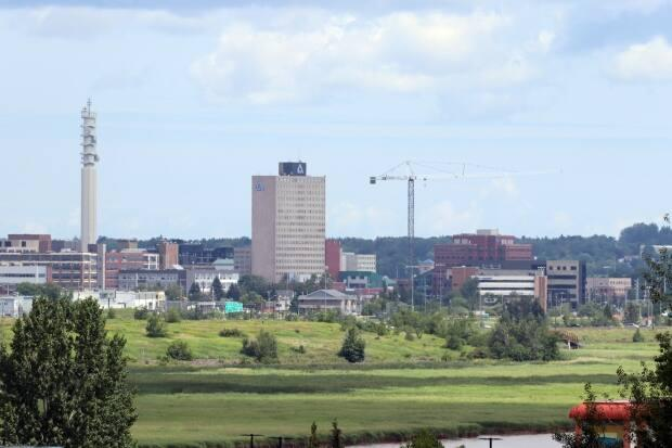 Five candidates running for the federal seat of Moncton-Riverview-Dieppe offer their takes on how they'd solve some of the challenges facing the constituents in the riding ahead of the election on Monday. (Shane Magee/CBC - image credit)